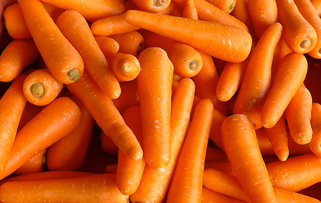 Though orange is the most common carrot colour, some varieties are yellow, white and purple.
