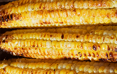 There are more than 200 varieties of corn, divided into three main classes.
