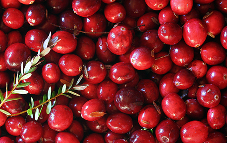 Fresh cranberries will keep for up to 6 weeks in a plastic bag or in the refrigerator