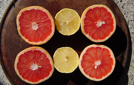 Fresh grapefruit is available year-round.