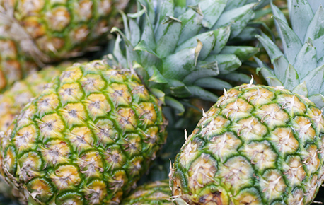 Store whole pineapple upside-down so that the sweet juices spread through the fruit.