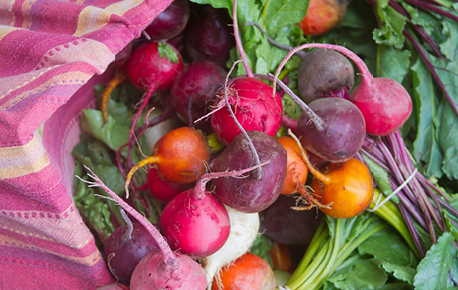 Did you know that you can add radish tops to salads?