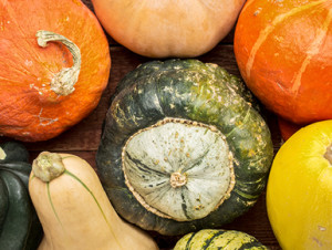 What's your favourite squash?