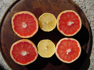 All About Grapefruit!