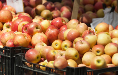 Apples like the cold so make sure to store them in your refrigerator crisper in a perforated plastic bag.