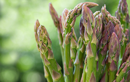 While the most common variety of asparagus is the green one, you can also find white and purple!