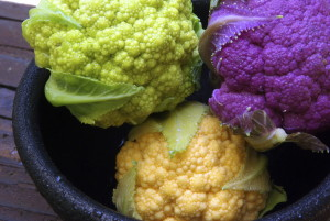 Beautiful and unique cauliflower varieties