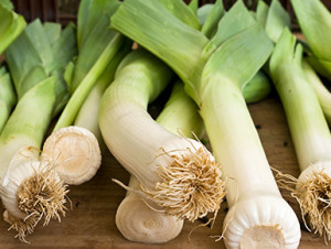 All about Leeks