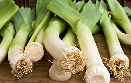 Leeks are delicious used in risottos, soups, casseroles, pasta sauces and omelets.