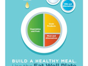 Government of Canada Launches the Eat Well Plate!
